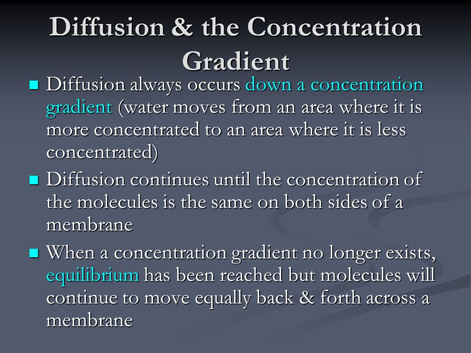 Diffusion & the Concentration Gradient