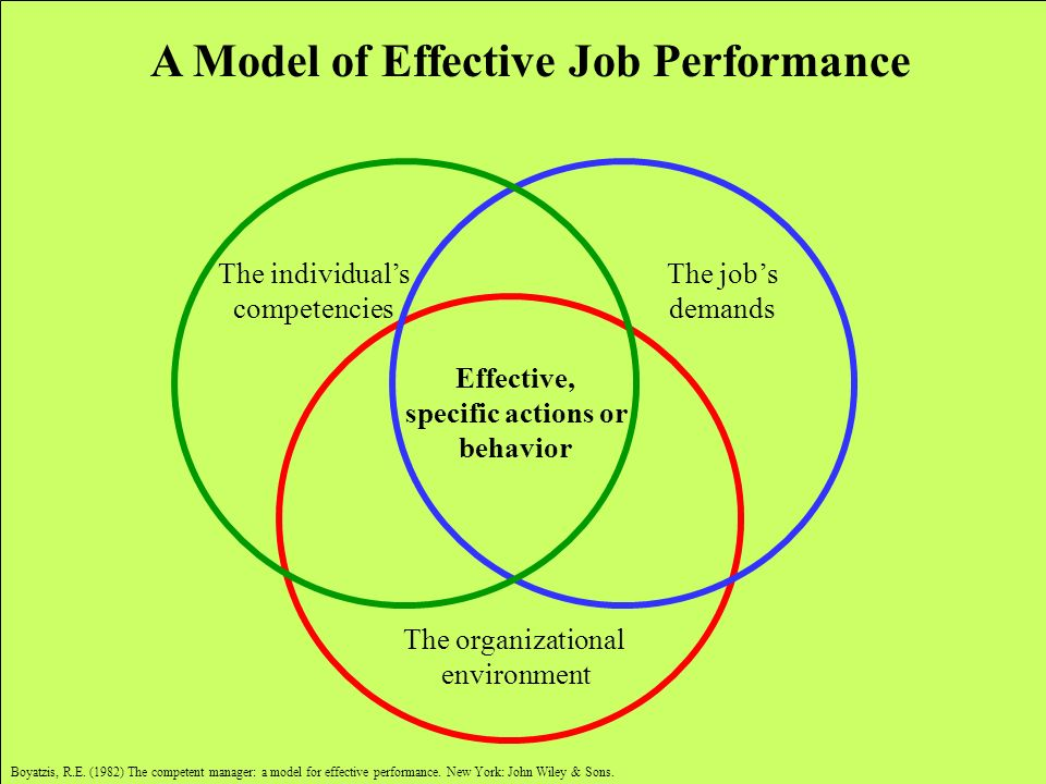 A Model of Effective Job Performance