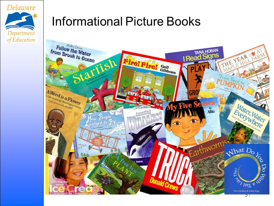 Informational Picture Books