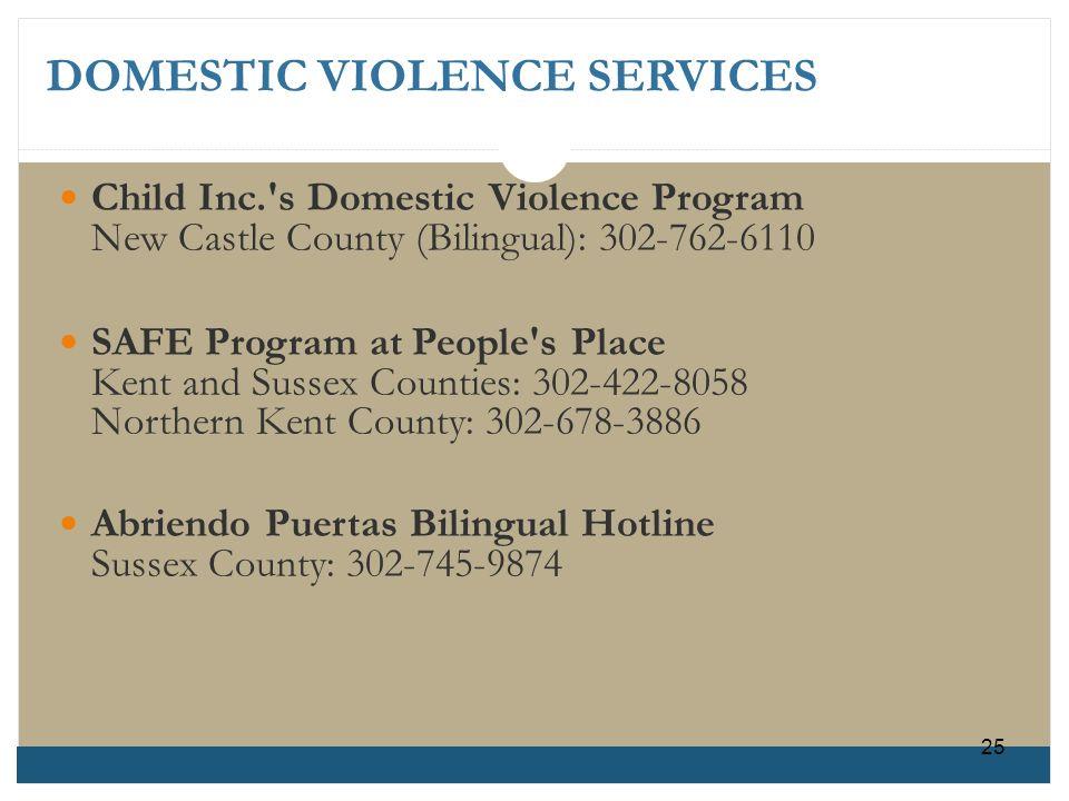 DOMESTIC VIOLENCE SERVICES