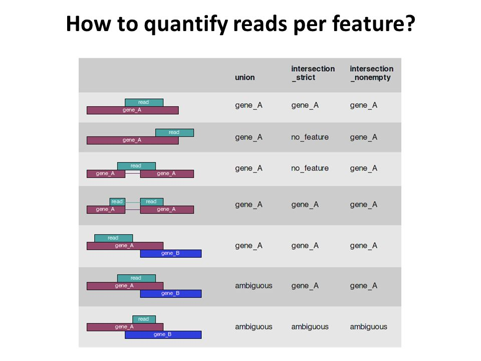 How to quantify reads per feature