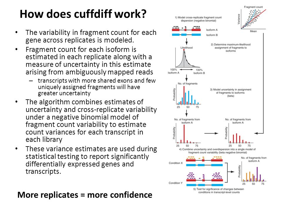 How does cuffdiff work More replicates = more confidence