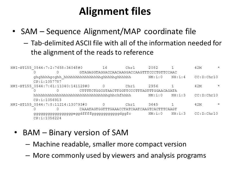 Alignment files SAM – Sequence Alignment/MAP coordinate file