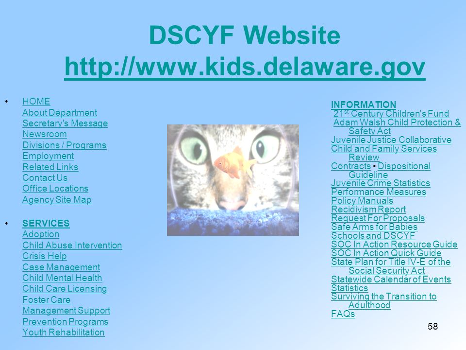 DSCYF Website http://www.kids.delaware.gov
