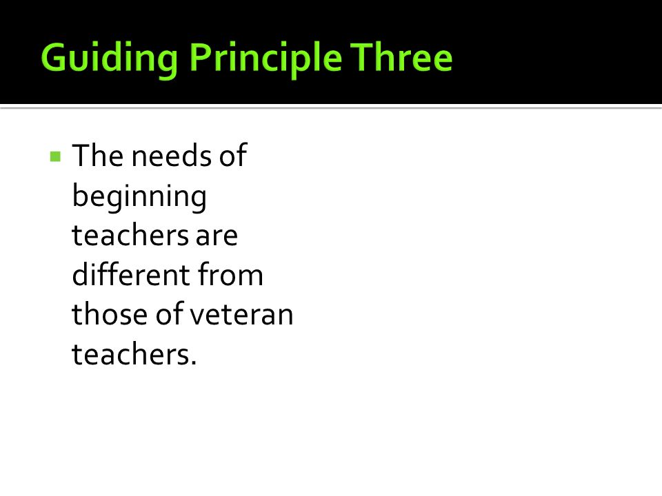 Guiding Principle Three