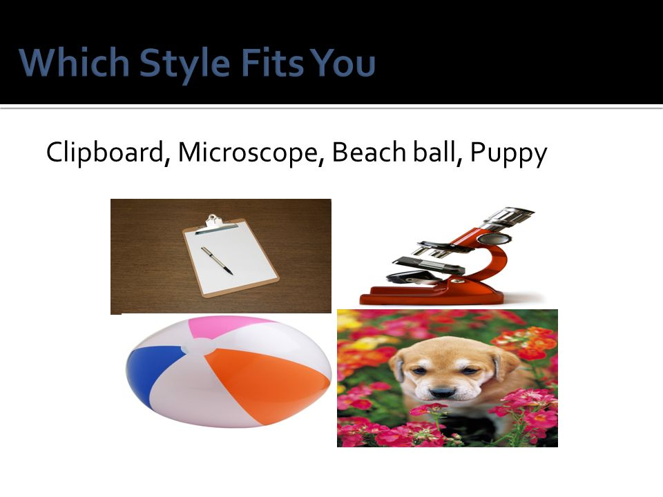 Which Style Fits You Clipboard, Microscope, Beach ball, Puppy
