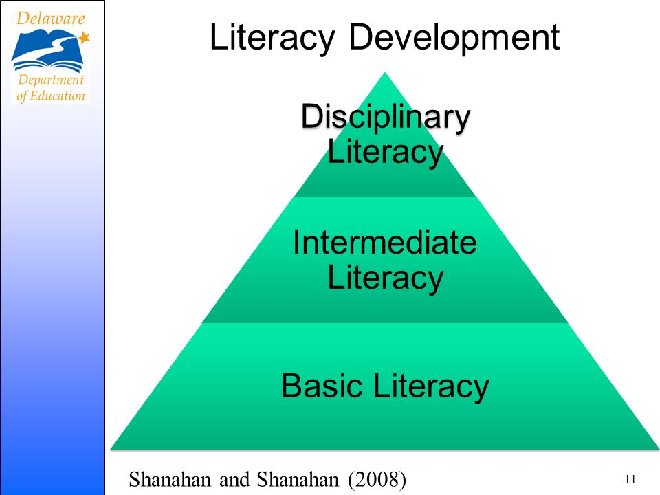 Literacy Development Disciplinary Literacy Intermediate Literacy