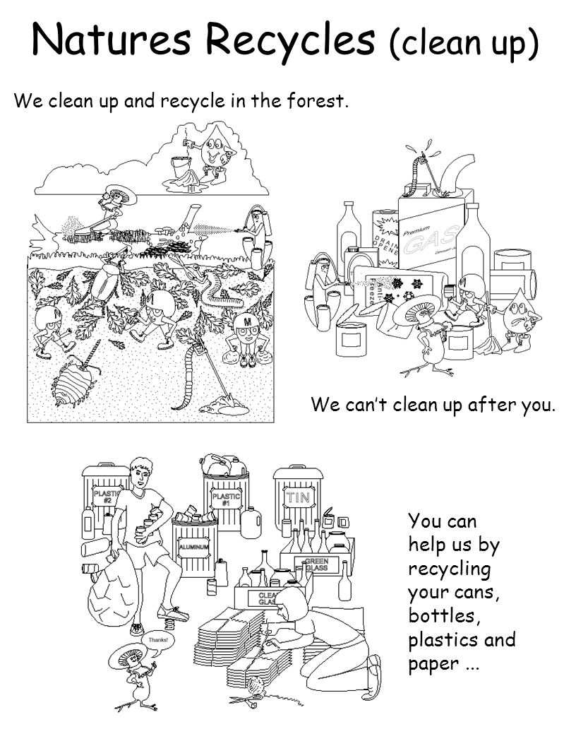 Natures Recycles (clean up)