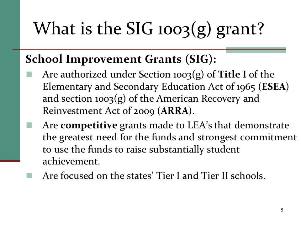 What is the SIG 1003(g) grant