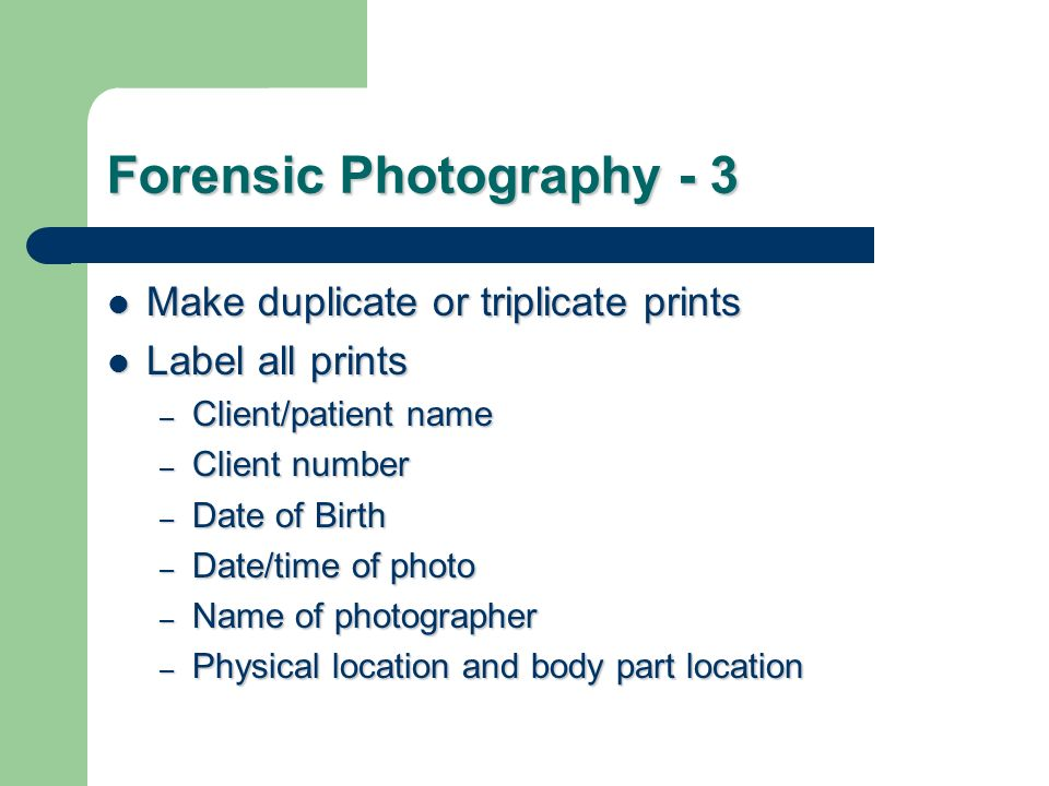 Forensic Photography - 3