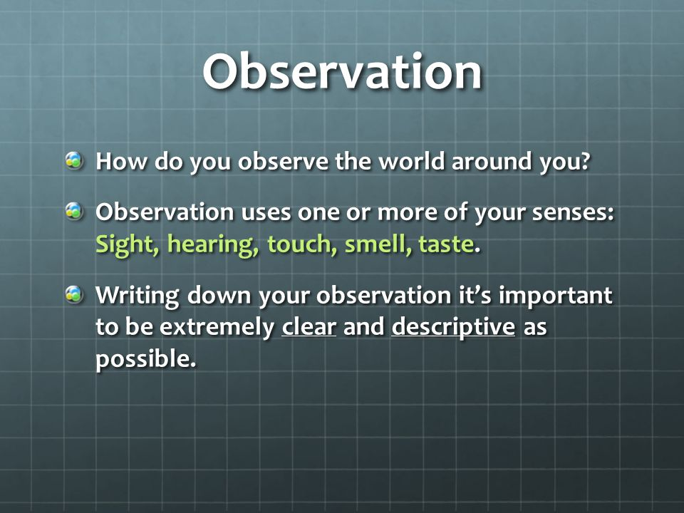 Observation How do you observe the world around you