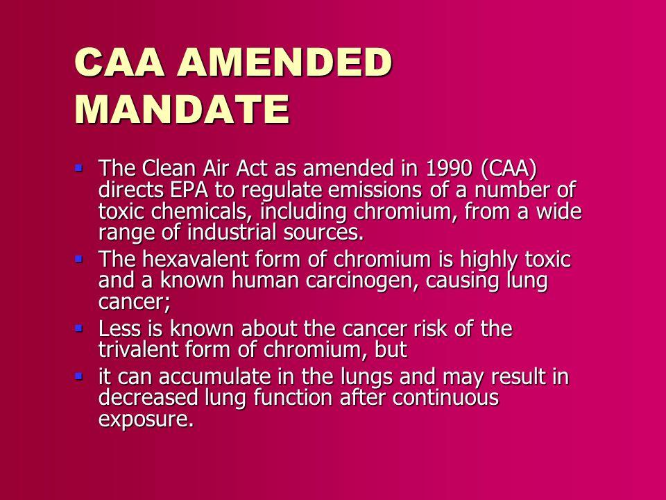 CAA AMENDED MANDATE