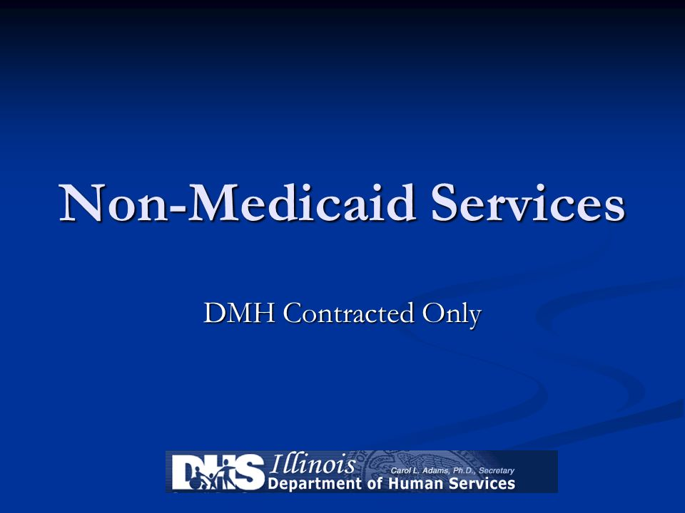 Non-Medicaid Services