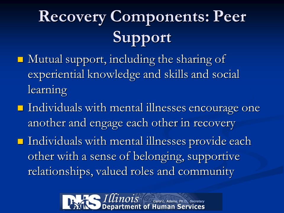 Recovery Components: Peer Support