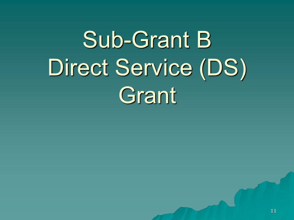 Sub-Grant B Direct Service (DS) Grant