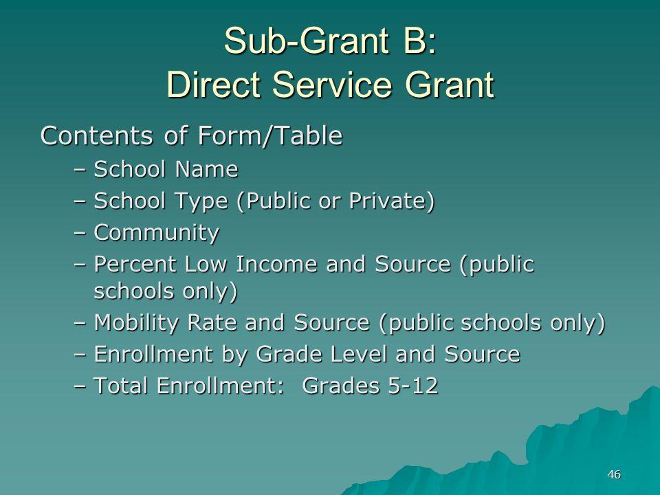 Sub-Grant B: Direct Service Grant