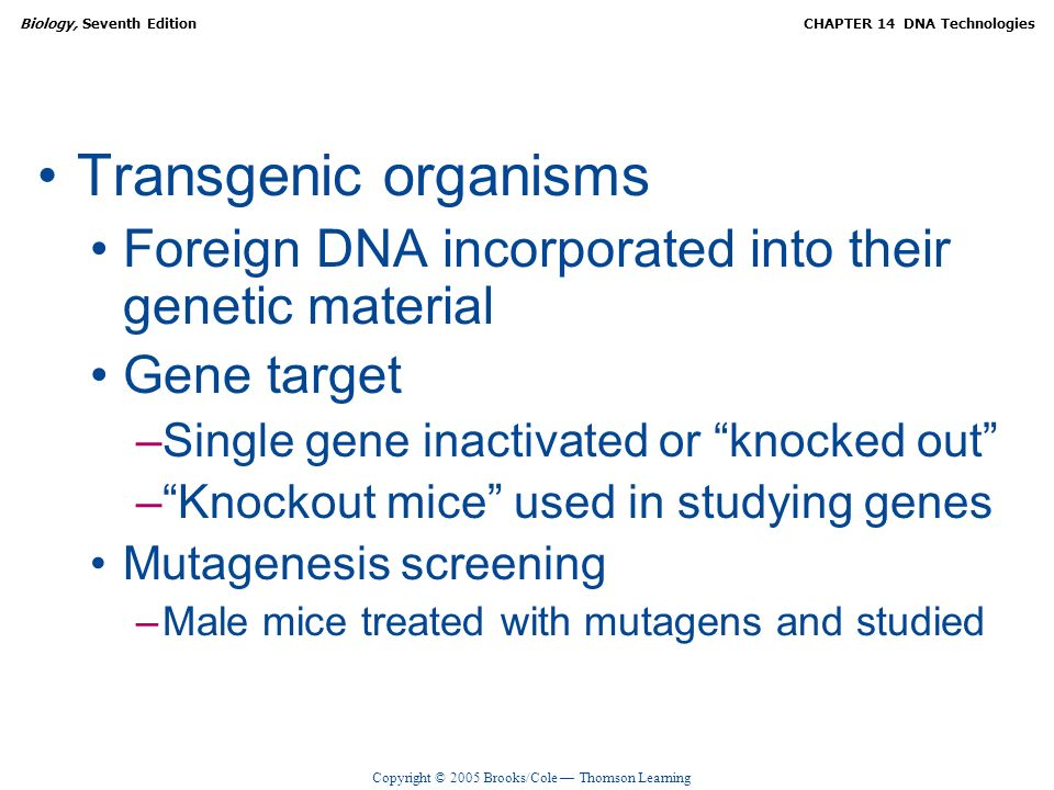 Transgenic organisms Foreign DNA incorporated into their genetic material. Gene target. Single gene inactivated or knocked out