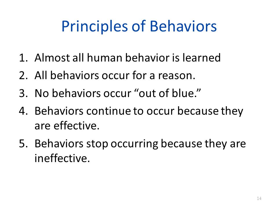 Principles of Behaviors