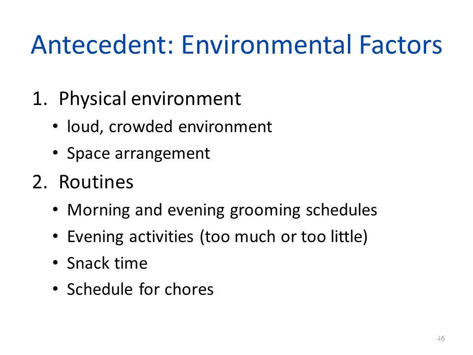 Antecedent: Environmental Factors