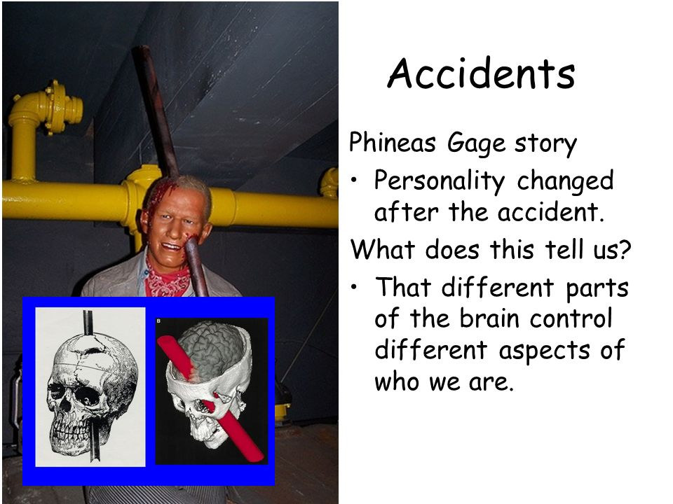 phineas gage research paper