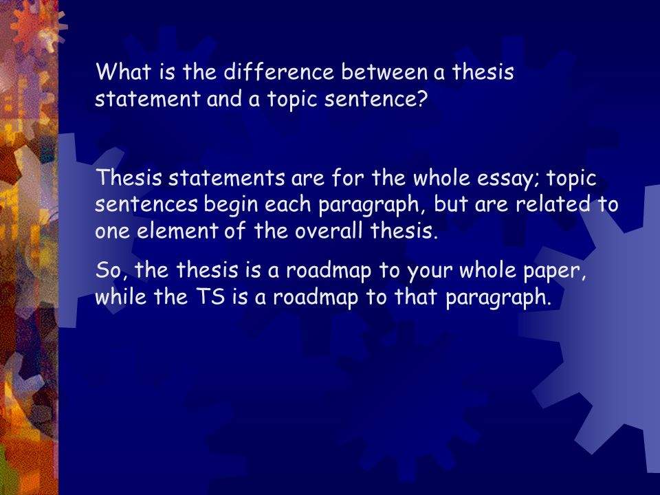 What is the difference between a thesis and an essay? - Quora
