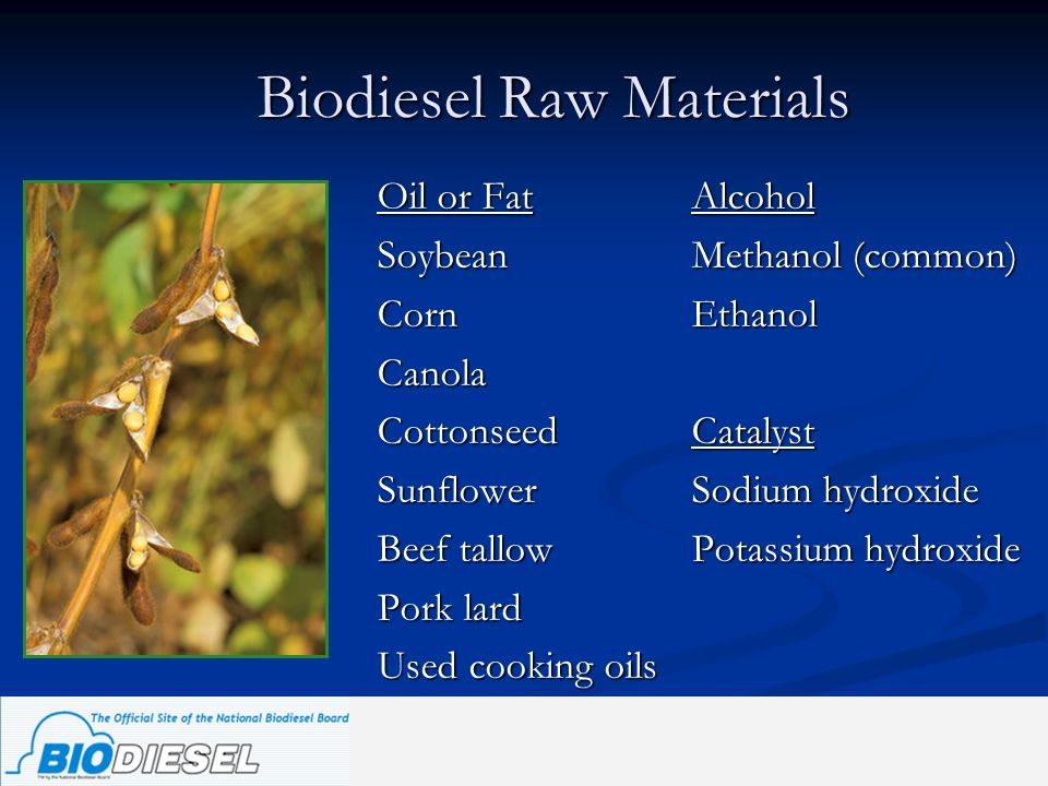 Biodiesel Raw Materials