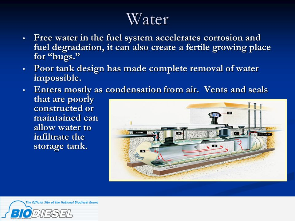 Water Free water in the fuel system accelerates corrosion and fuel degradation, it can also create a fertile growing place for bugs.