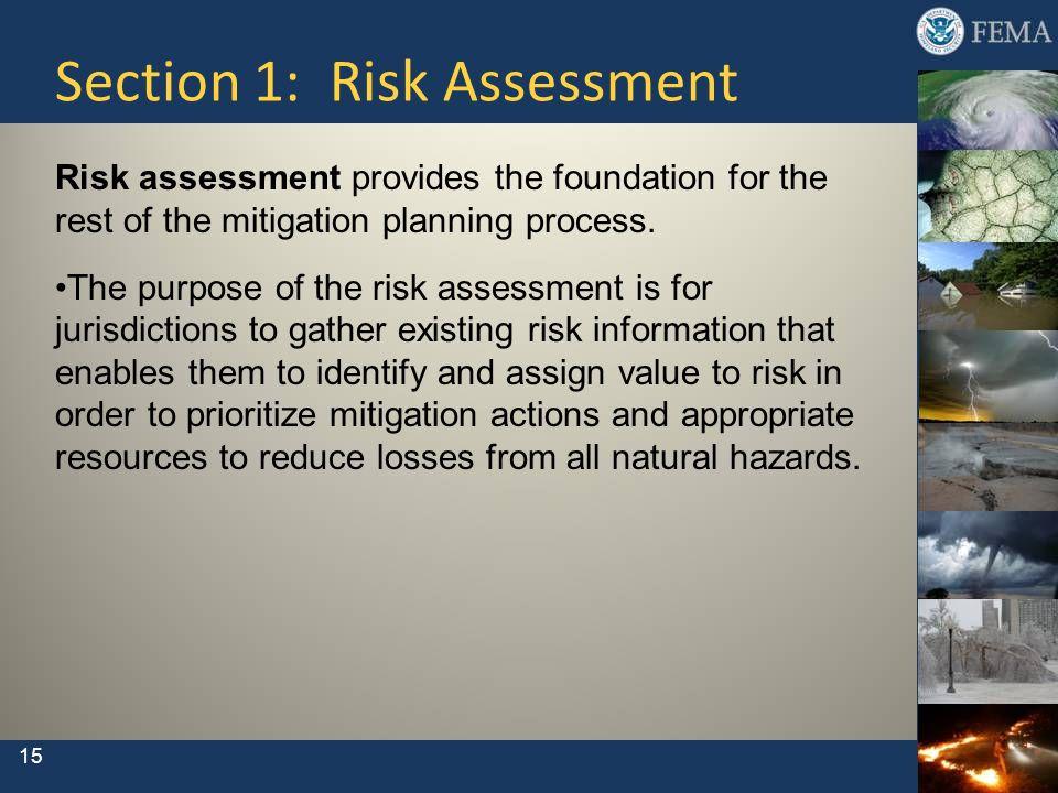 Section 1: Risk Assessment