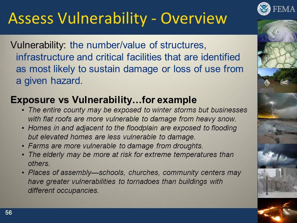 Assess Vulnerability - Overview