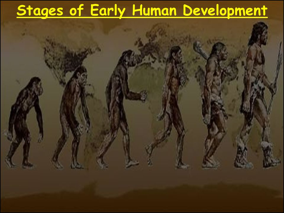 Are carbon dating methods accurate 1