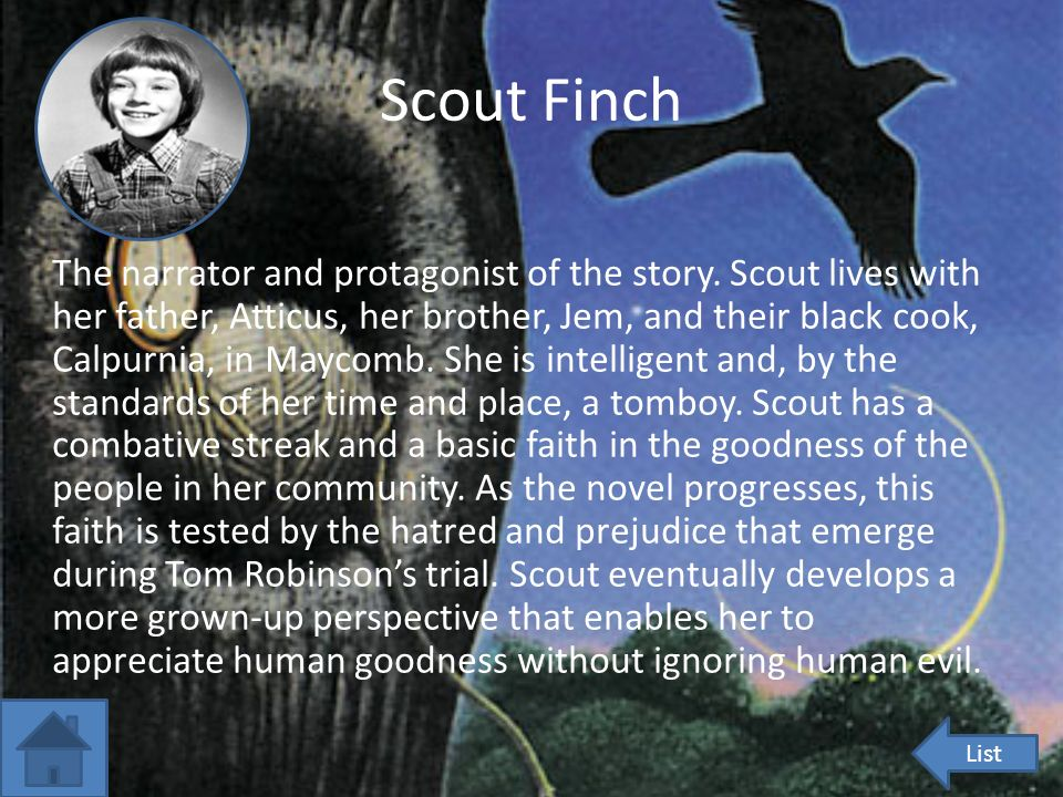 An analysis of atticus finch the father of jem and scout finch