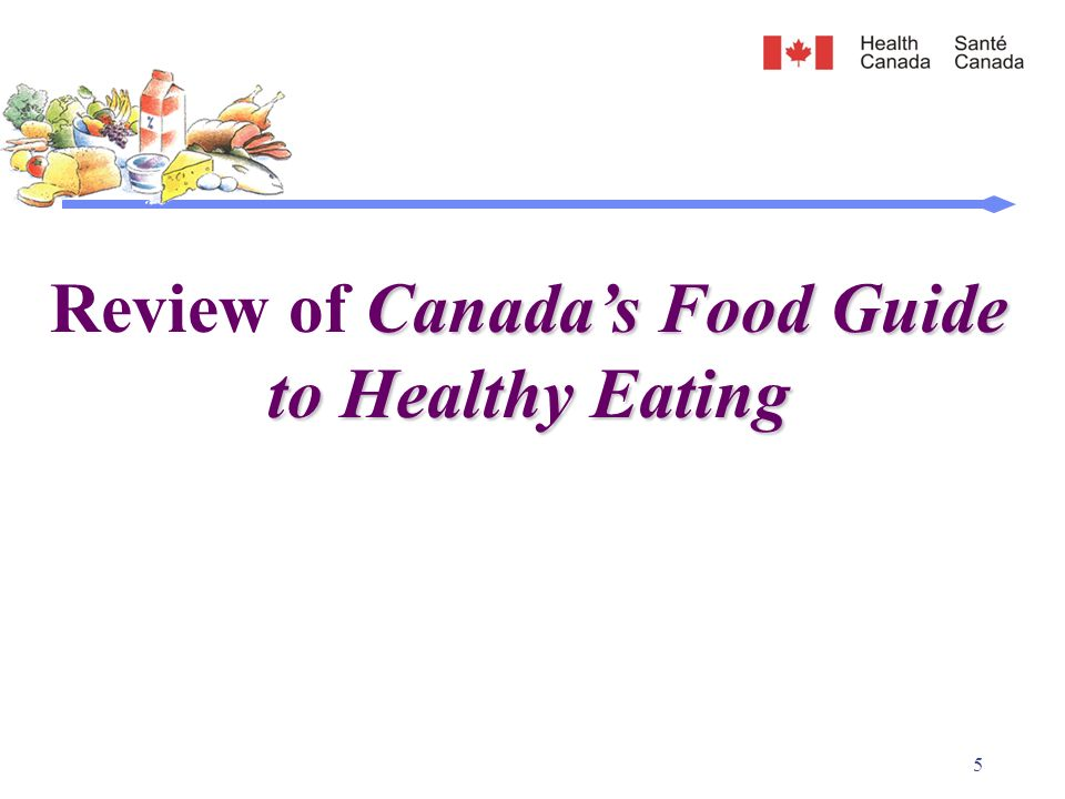 health canada food guide pdf