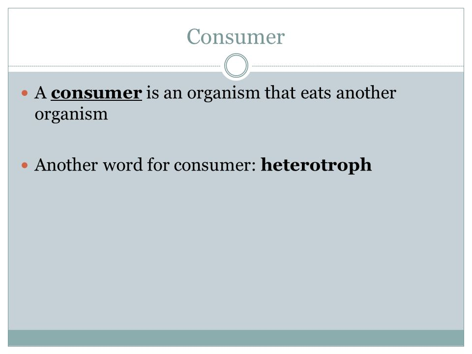 Consumer A consumer is an organism that eats another organism
