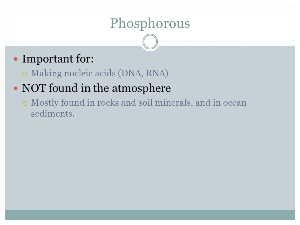 Phosphorous Important for: NOT found in the atmosphere