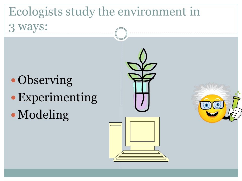 Ecologists study the environment in 3 ways: