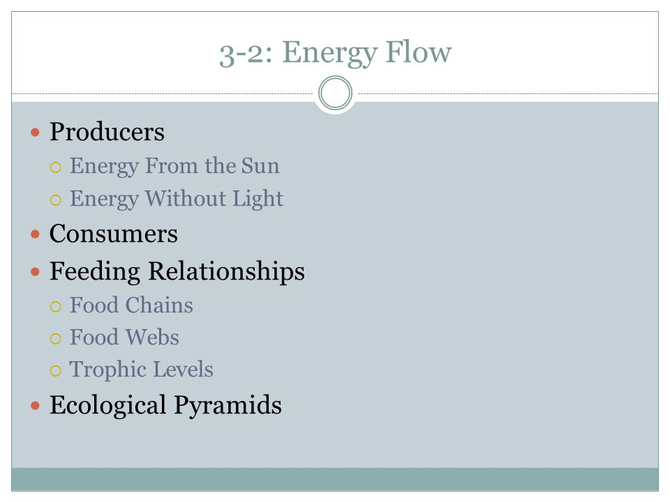 3-2: Energy Flow Producers Consumers Feeding Relationships