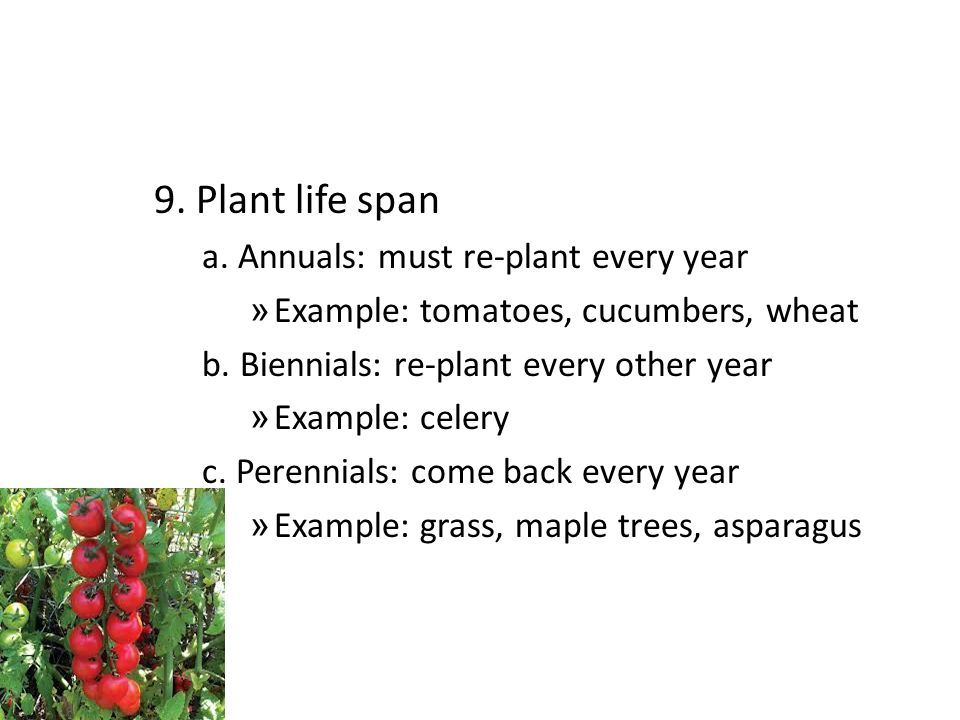 9. Plant life span a. Annuals: must re-plant every year