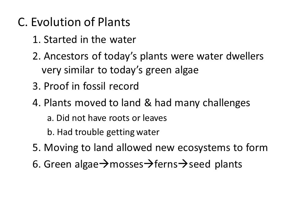 C. Evolution of Plants 1. Started in the water