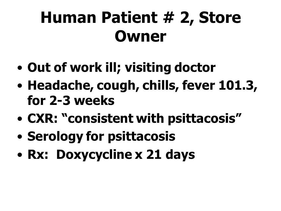 Human Patient # 2, Store Owner