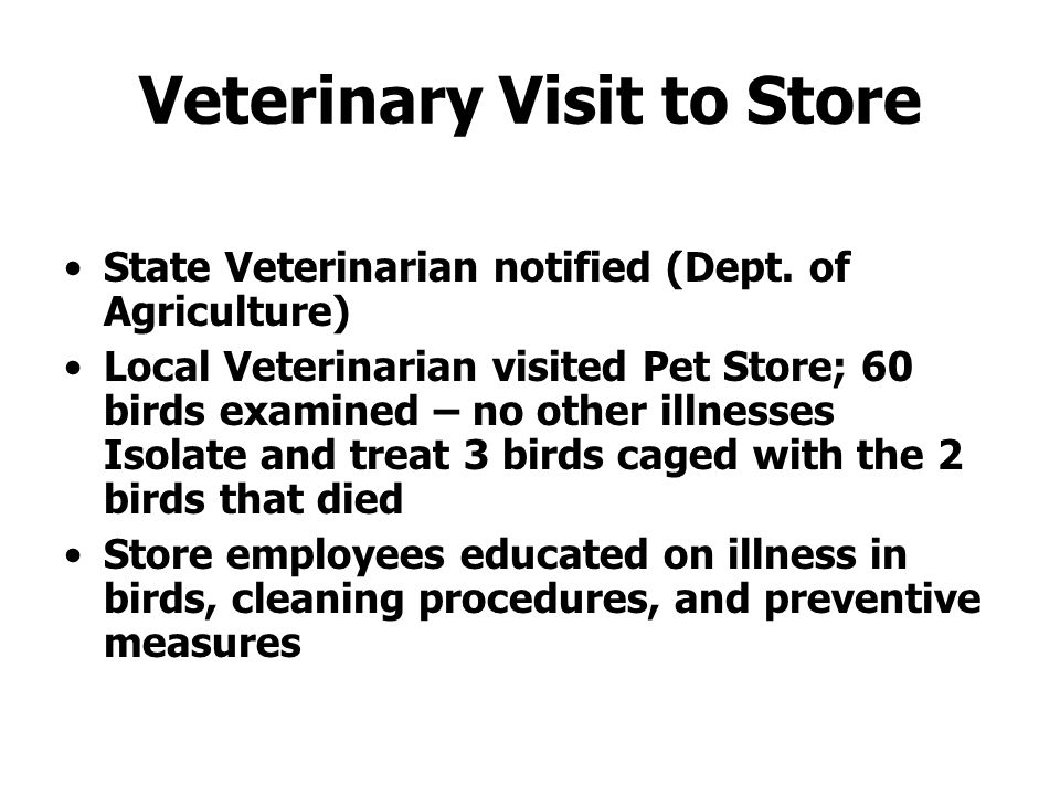 Veterinary Visit to Store