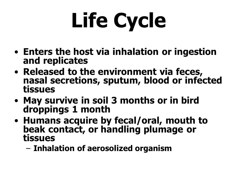Life Cycle Enters the host via inhalation or ingestion and replicates
