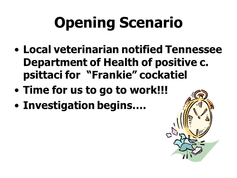 Opening Scenario Local veterinarian notified Tennessee Department of Health of positive c. psittaci for Frankie cockatiel.