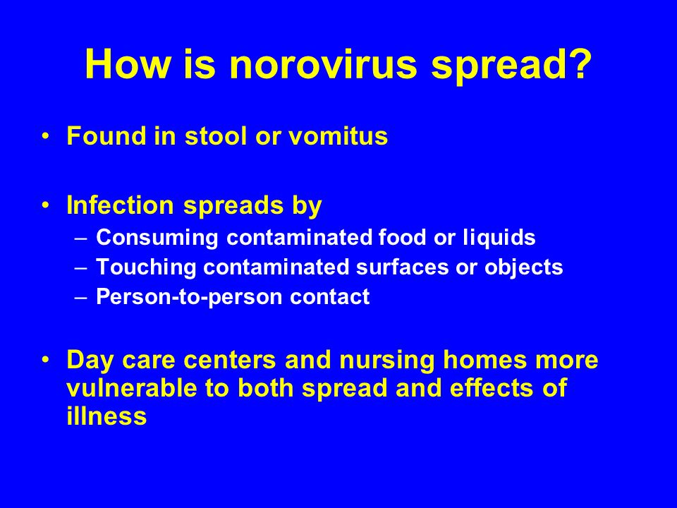 How is norovirus spread