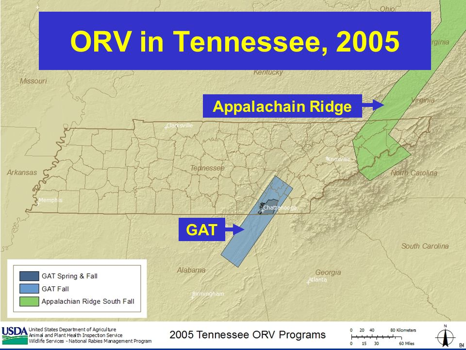 ORV in Tennessee, 2005 Appalachain Ridge GAT