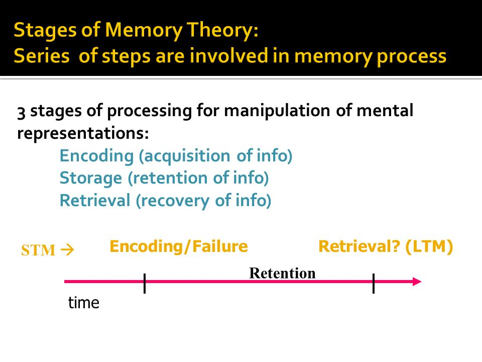 stages of learning and information processing theory Cognitive psychology & information processing theory information processing model 10/11/11 2 sensory memory • a memory buffer holding sensory input  of effective learning it also is important to use one's knowledge strategically and to understand the strengths and.