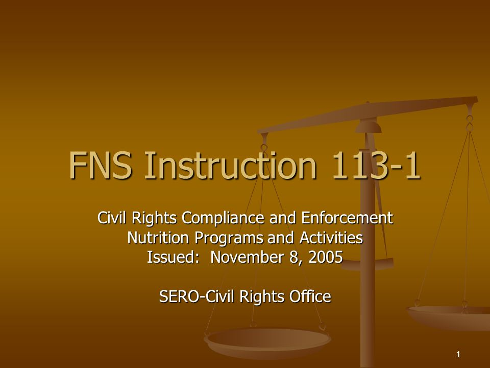 FNS Instruction 113-1 Civil Rights Compliance and Enforcement
