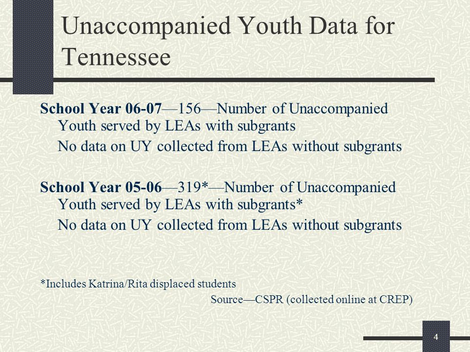 Unaccompanied Youth Data for Tennessee
