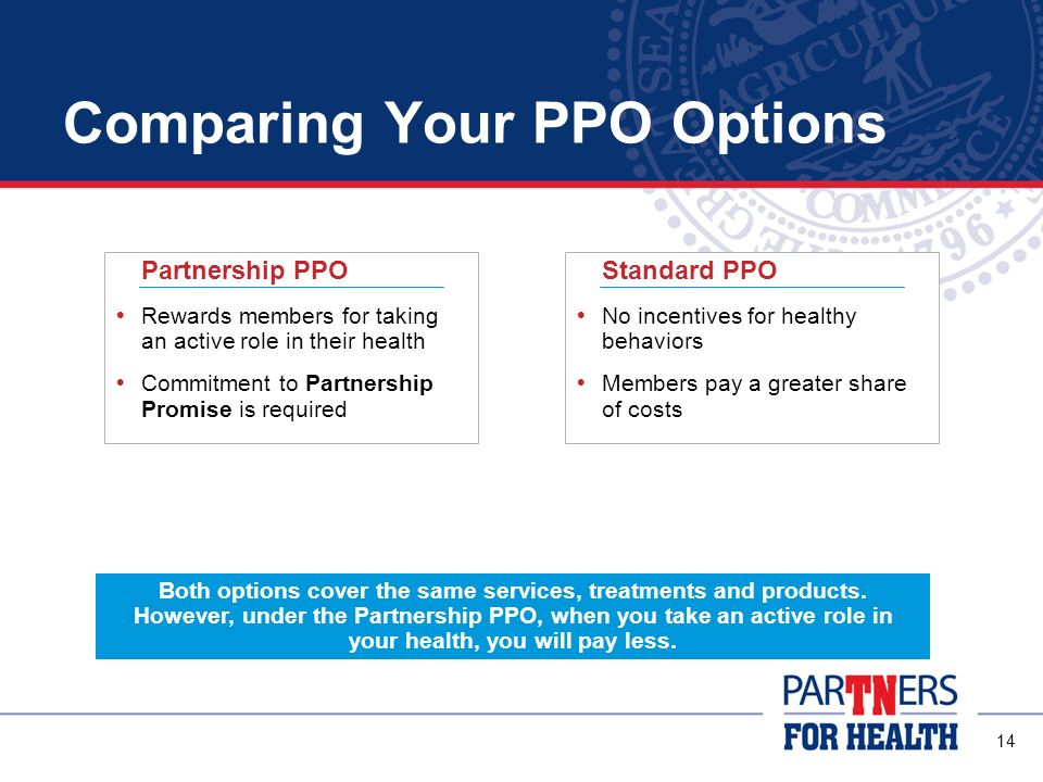 Comparing Your PPO Options