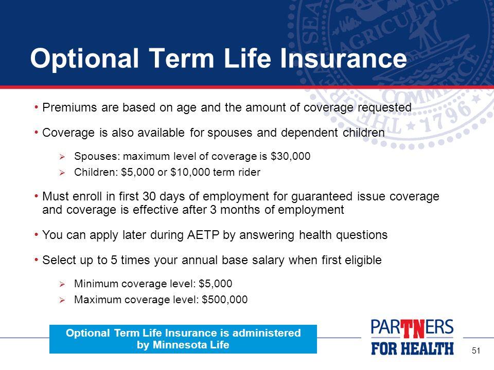 Optional Term Life Insurance