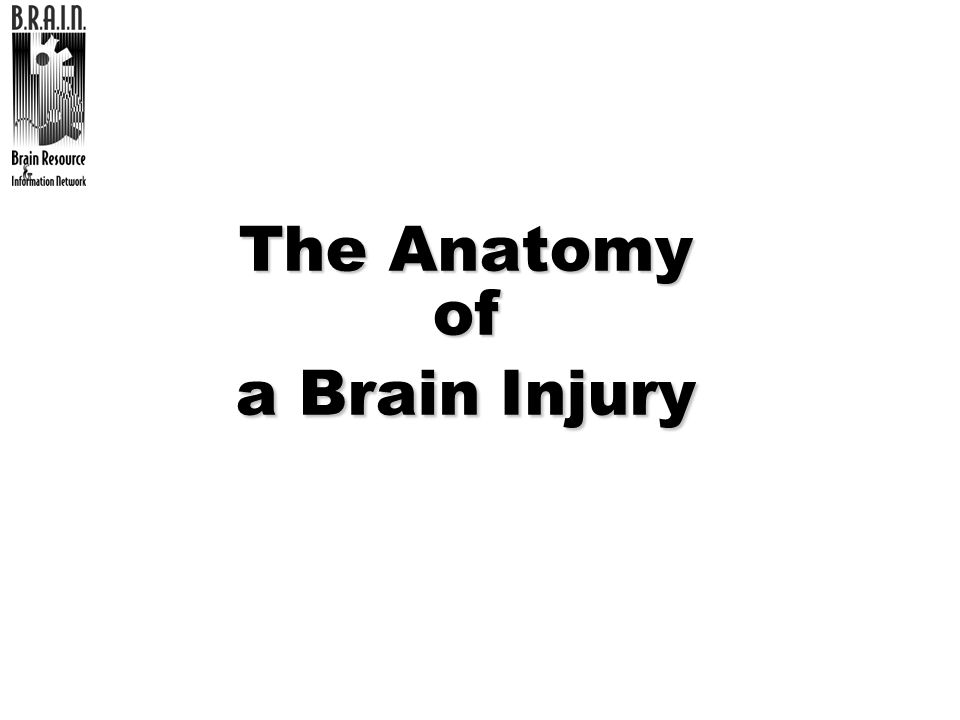 The Anatomy of a Brain Injury